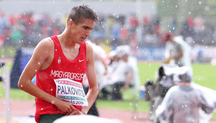Palkovits István