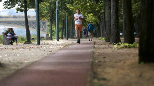 Margitsziget futókör